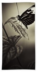 Butterfly Brown Tone Beach Sheet by Bradley R Youngberg