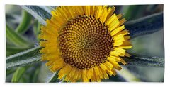 Beach Towel featuring the photograph Spring Wild Flower by George Atsametakis