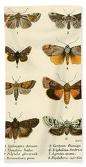 Butterflies Beach Towel by English School