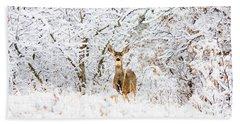 Doe Mule Deer In Snow Beach Towel