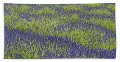 Lavendar Field Rows Of White And Purple Flowers Beach Sheet