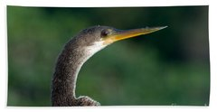 Anhinga Beach Towel by Mark Newman