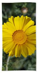 Beach Sheet featuring the photograph Crown Daisy Flower by George Atsametakis