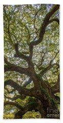 Island Angel Oak Tree Beach Towel