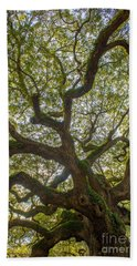 Island Angel Oak Tree Beach Towel