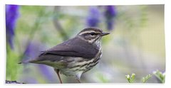 Northern Waterthrush Beach Towel