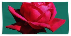 A Big Red Rose Beach Sheet by Tom Janca
