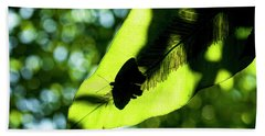 A Butterfly At The Butterfly Park Beach Towel