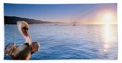 A California Brown Pelican Perches Beach Towel