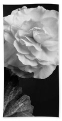 A Camellia Flower Beach Towel