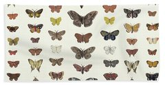 A Collage Of Butterflies And Moths Beach Towel