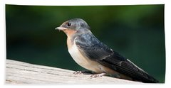 A Female Purple Martin Is Watching You Beach Towel