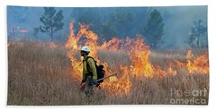 A Firefighter Ignites The Norbeck Prescribed Fire. Beach Sheet
