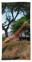 A Giraffe Rests In Honolulu Beach Sheet
