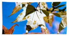 Beach Towel featuring the photograph Autumn  In New Orleans Louisiana by Michael Hoard