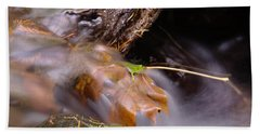 A Leaf Captured Beach Towel