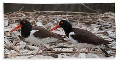 A Mated Pair Of Oyster Catchers Beach Sheet