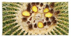 A Mexican Golden Barrel Cactus With Blossoms Beach Sheet by Tom Janca