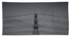 A Murmuration Of Starlings Beach Towel