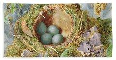 A Nest Of Eggs, 1871 Beach Towel