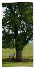 A One Horse Tree And Its Horse					 Beach Towel