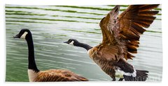 Beach Sheet featuring the photograph A Pair Of Canada Geese Landing On Rockland Lake by Jerry Cowart