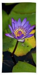 A Purple Lily Blossoming  Maui, Hawaii Beach Towel