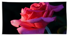 Beach Towel featuring the photograph A Rose Is A Rose by David Andersen
