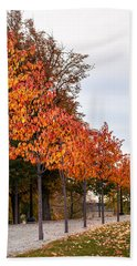 A Row Of Autumn Trees Beach Towel
