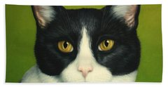 A Serious Cat Beach Towel by James W Johnson