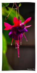 A Special Red Flower  Beach Towel by Gandz Photography