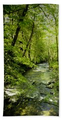 A Spring Day At Lithia Creek Beach Towel by Diane Schuster