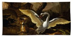 A Swan Enraged By Hondius Beach Towel