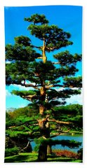 A Tree... Beach Towel by Tim Fillingim