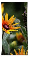 A Walk In The Garden Beach Towel by Sue Stefanowicz
