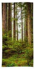 Beach Sheet featuring the photograph A Walk Inthe Forest by Ken Stanback
