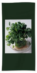 A Watercress Plant In A Bowl Of Water Beach Towel
