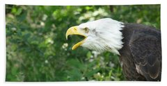 Beach Towel featuring the photograph Adler Raptor Bald Eagle Bird Of Prey Bird by Paul Fearn