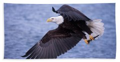 Adult Bald Eagle Flying With A Fish Beach Towel