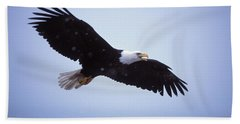 Adult Bald Eagle In Flight Beach Towel