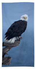 Adult Bald Eagle On A Driftwood Perch Beach Towel