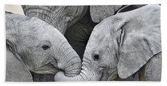 African Elephant Calves Loxodonta Beach Towel