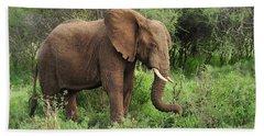 African Elephant Grazing Serengeti Beach Towel