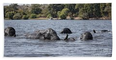African Elephants Swimming In The Chobe River Beach Sheet