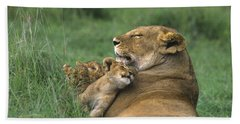 African Lions Mother And Cubs Tanzania Beach Sheet