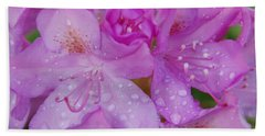 Beach Towel featuring the photograph After The Rain by Aimee L Maher Photography and Art Visit ALMGallerydotcom