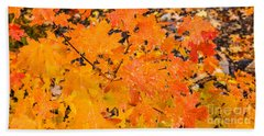 Beach Towel featuring the photograph After The Rain by Sue Smith