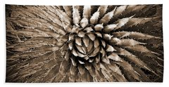 Agave Spikes Sepia Beach Towel