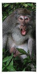 Aggressive Monkey From Bali Beach Towel by Sergey Lukashin