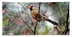 Alert - Northern Cardinal Beach Towel by Ramabhadran Thirupattur